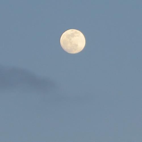 黄昏や 雪の灯と 如月の月_c0075701_18584281.jpg