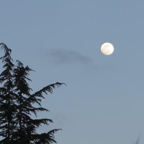 黄昏や 雪の灯と 如月の月_c0075701_18585185.jpg