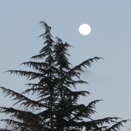 黄昏や 雪の灯と 如月の月_c0075701_18585870.jpg
