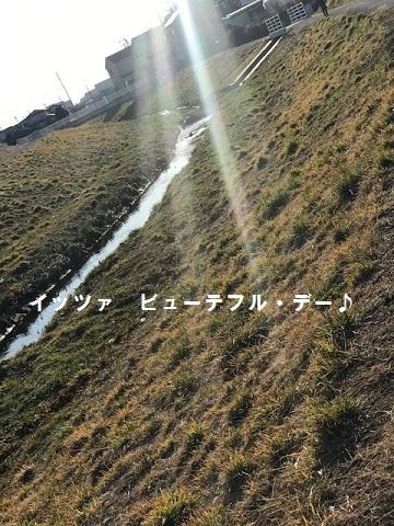 ビューティフル・サンデー♪_f0242002_11350768.jpg