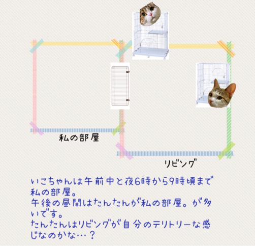 犬のお雛様 猫のお雛様_f0375804_09445637.jpg