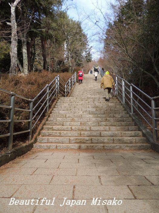 階段が果てしない。。。398段~(-_-)。・・゚・゚☆。。新倉山浅間神社_c0067206_12502140.jpg