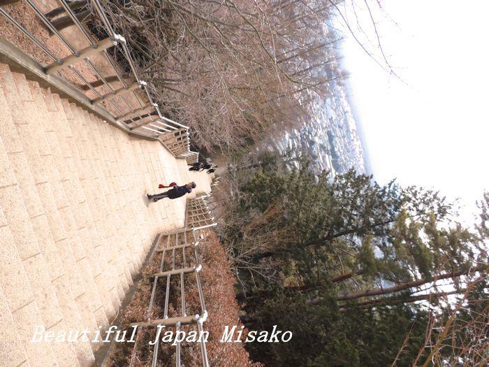 階段が果てしない。。。398段~(-_-)。・・゚・゚☆。。新倉山浅間神社_c0067206_12502375.jpg
