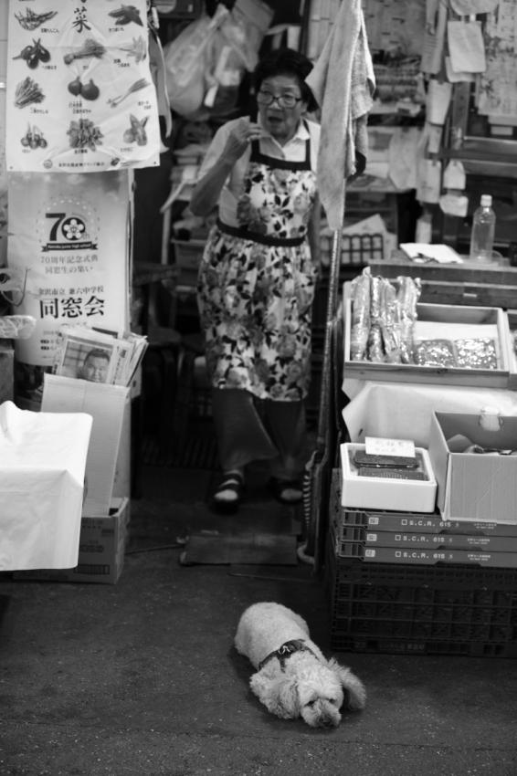 「夏」が好きな人~金沢近江町市場にて~_d0349418_20540702.jpg