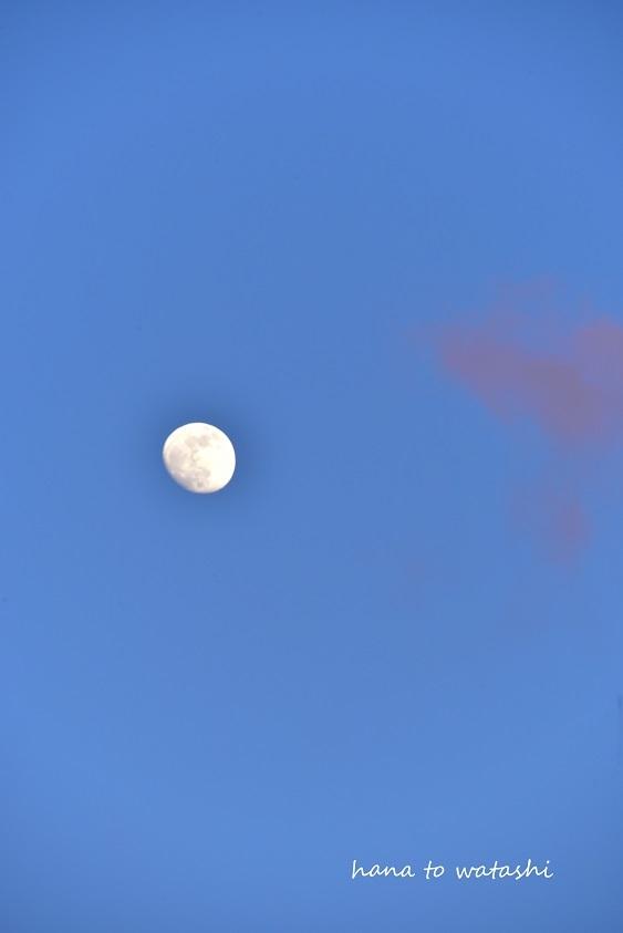 冷たい空気と夕陽_e0120026_08272161.jpg
