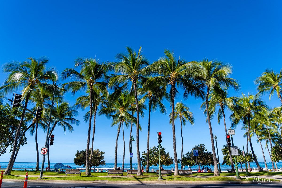 ハワイ -18-_f0152550_21553951.jpg