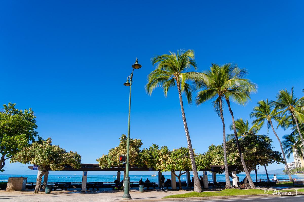 ハワイ -18-_f0152550_21554560.jpg