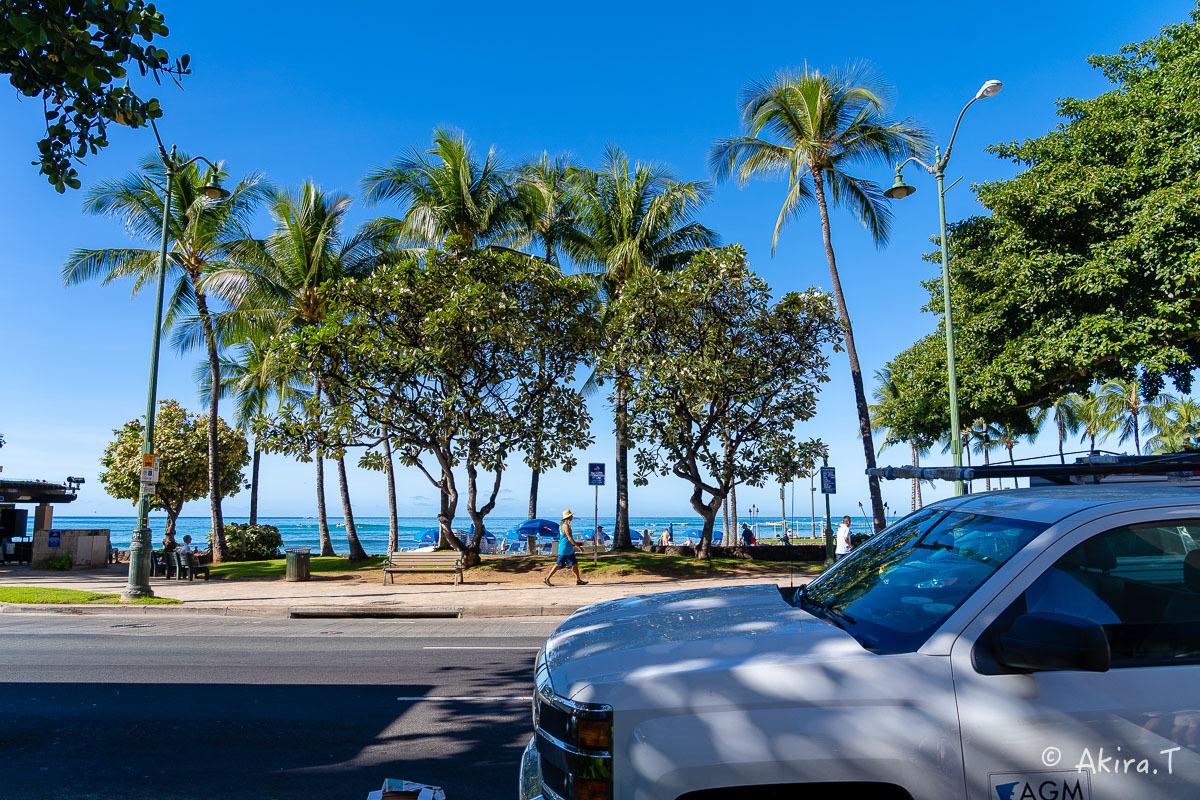 ハワイ -18-_f0152550_21560006.jpg
