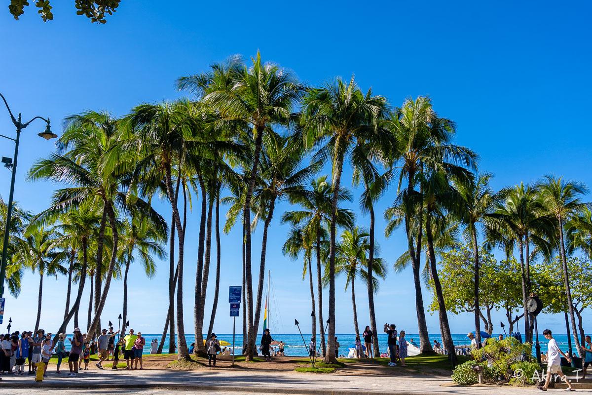 ハワイ -18-_f0152550_21562315.jpg
