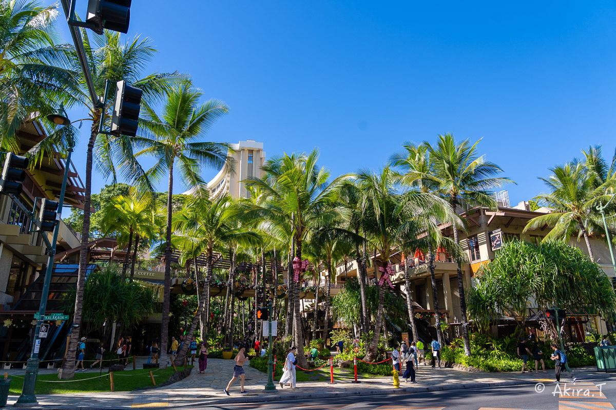 ハワイ -18-_f0152550_21563687.jpg