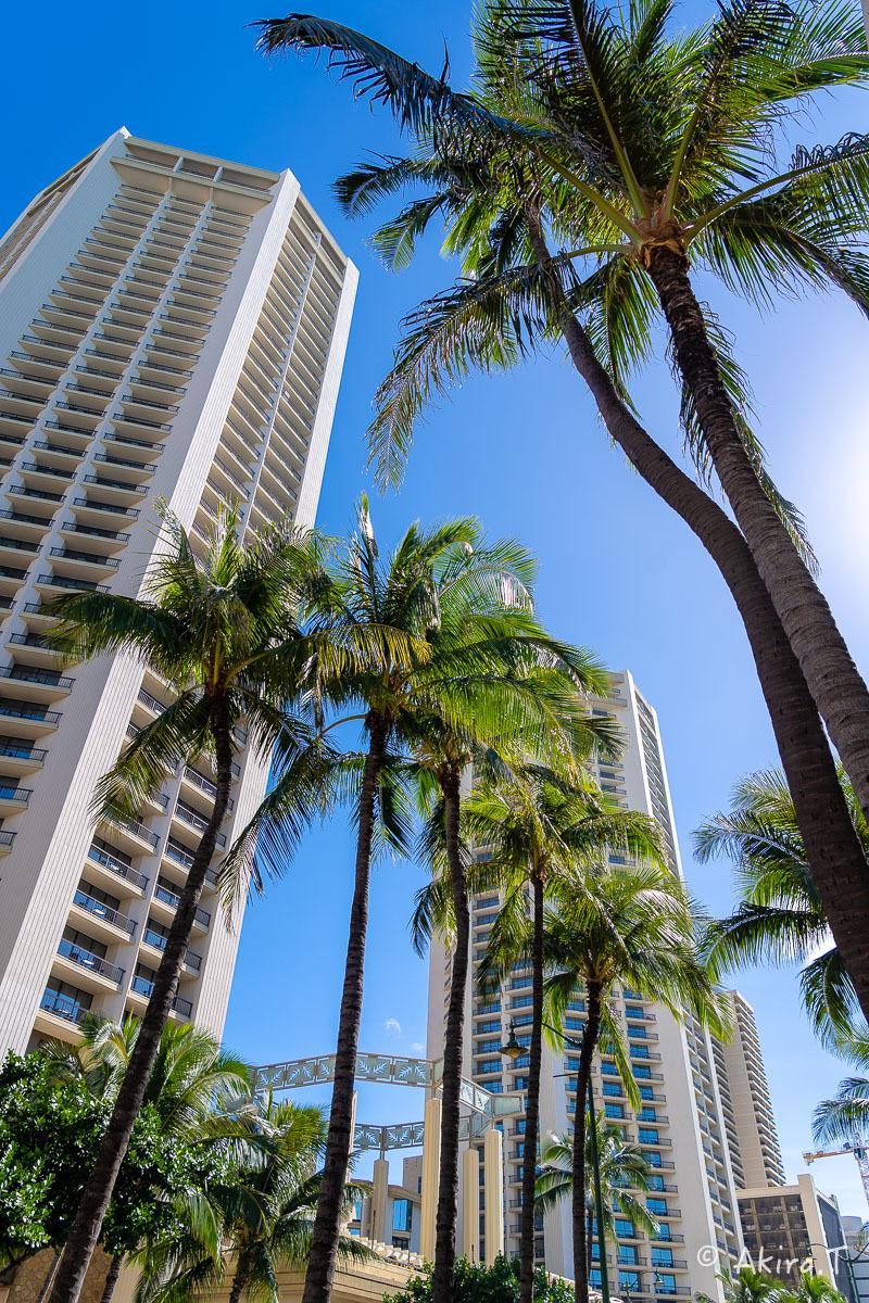 ハワイ -18-_f0152550_21585674.jpg