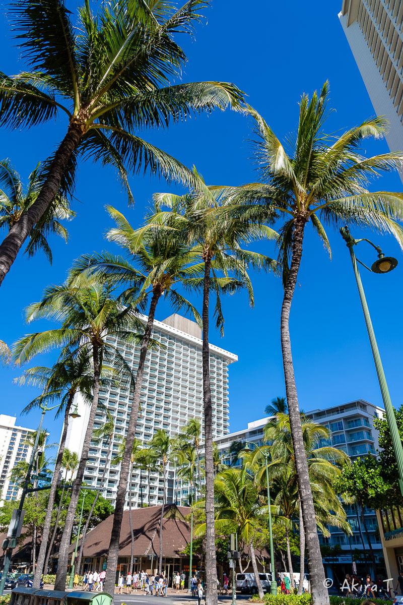ハワイ -18-_f0152550_21590667.jpg