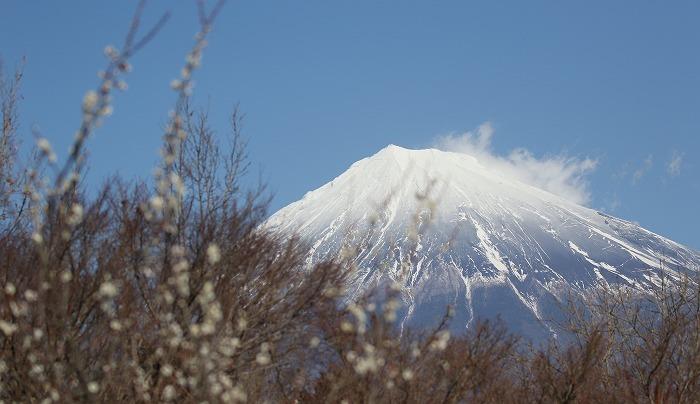 富士山_c0385854_06545685.jpg