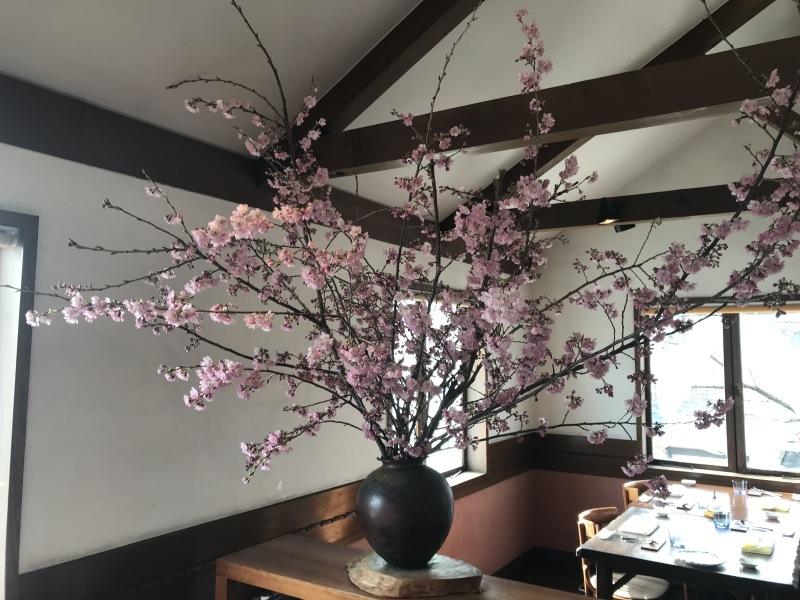 春がもうすぐ_d0177560_21093264.jpeg