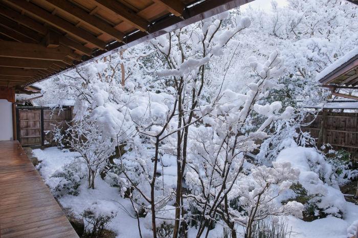 京都 大原雪景色 2019_f0021869_23023817.jpg