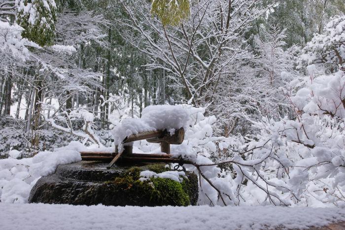 京都 大原雪景色 2019_f0021869_23023837.jpg