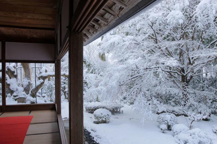 京都 大原雪景色 2019_f0021869_23023939.jpg