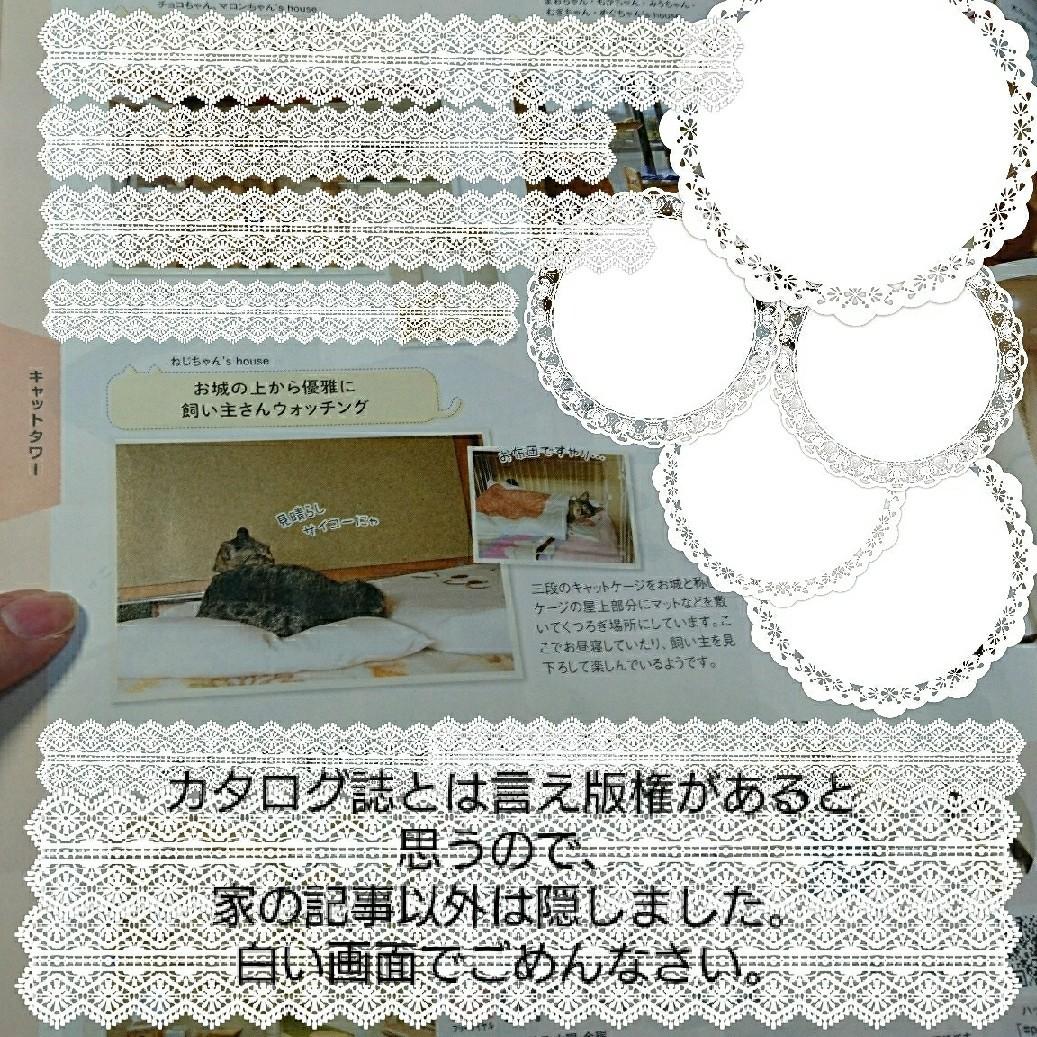 b0239781_14081078.jpg