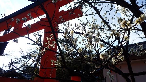 玉津島神社 _c0367107_13594195.jpg