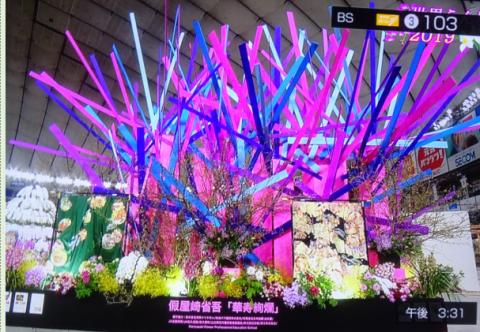 世界らん展2019~花と緑の祭典~BSプレミアム再放送…2019/2/19_f0231709_17052858.png