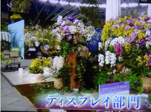 世界らん展2019~花と緑の祭典~BSプレミアム再放送…2019/2/19_f0231709_17054010.png