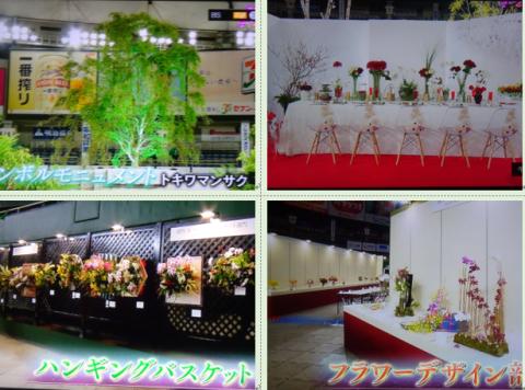 世界らん展2019~花と緑の祭典~BSプレミアム再放送…2019/2/19_f0231709_17065448.png