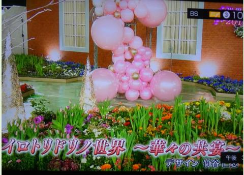 世界らん展2019~花と緑の祭典~BSプレミアム再放送…2019/2/19_f0231709_17075468.png