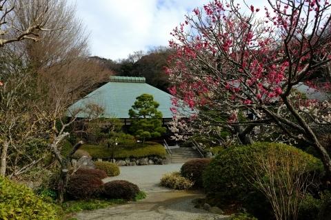 鎌倉五山と三十三観音巡り_e0000910_10573708.jpg