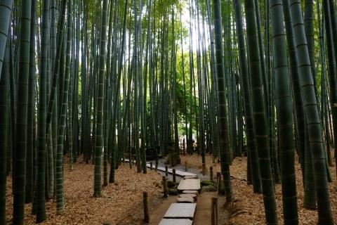 鎌倉五山と三十三観音巡り_e0000910_10593830.jpg