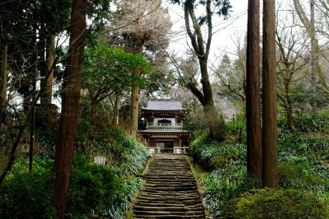 鎌倉五山と三十三観音巡り_e0000910_12141393.jpg
