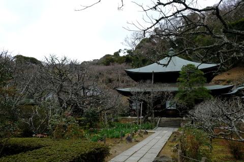 鎌倉五山と三十三観音巡り_e0000910_13322689.jpg