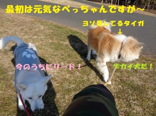 f0121712_22525187.jpg