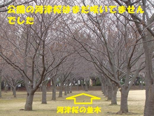 f0121712_23350010.jpg