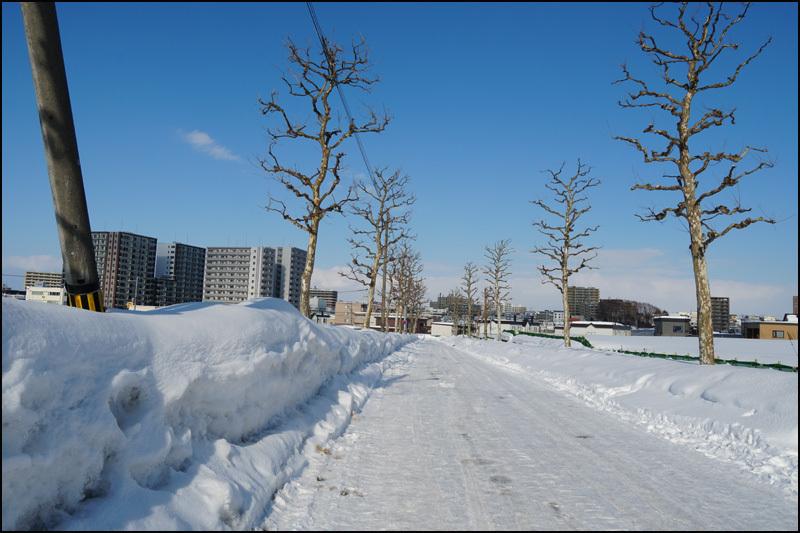 この雪の景色 見納です(新さっぽろ再開発)_b0019313_16054247.jpg