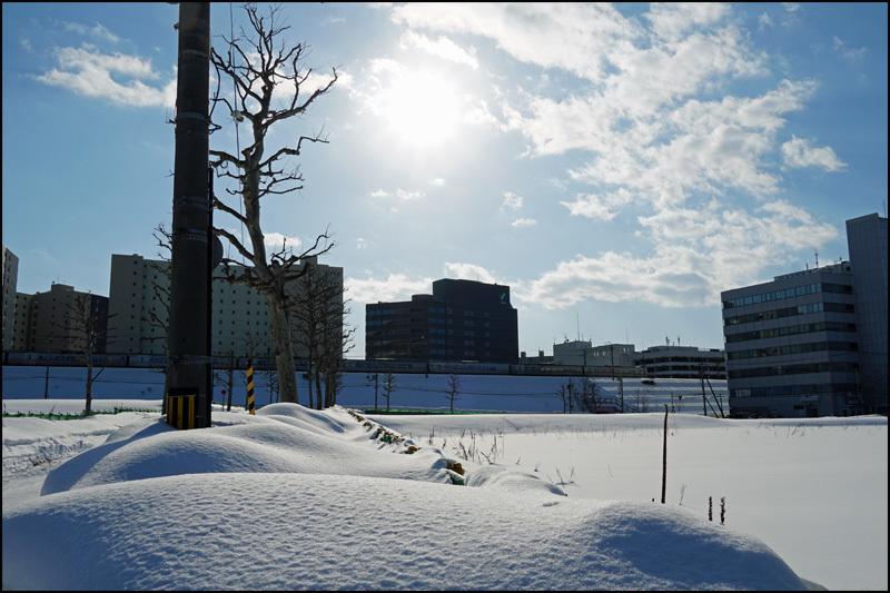 この雪の景色 見納です(新さっぽろ再開発)_b0019313_16063823.jpg
