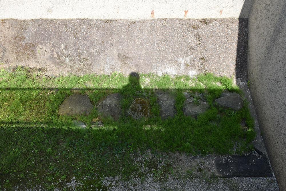 越前北ノ庄城跡・柴田神社を訪ねて。_e0158128_19124507.jpg