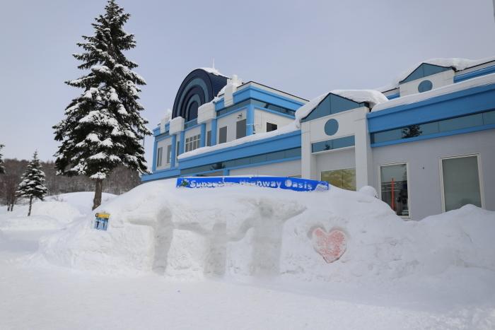 冬の北海道旅行 - 1 -_f0348831_19543733.jpg