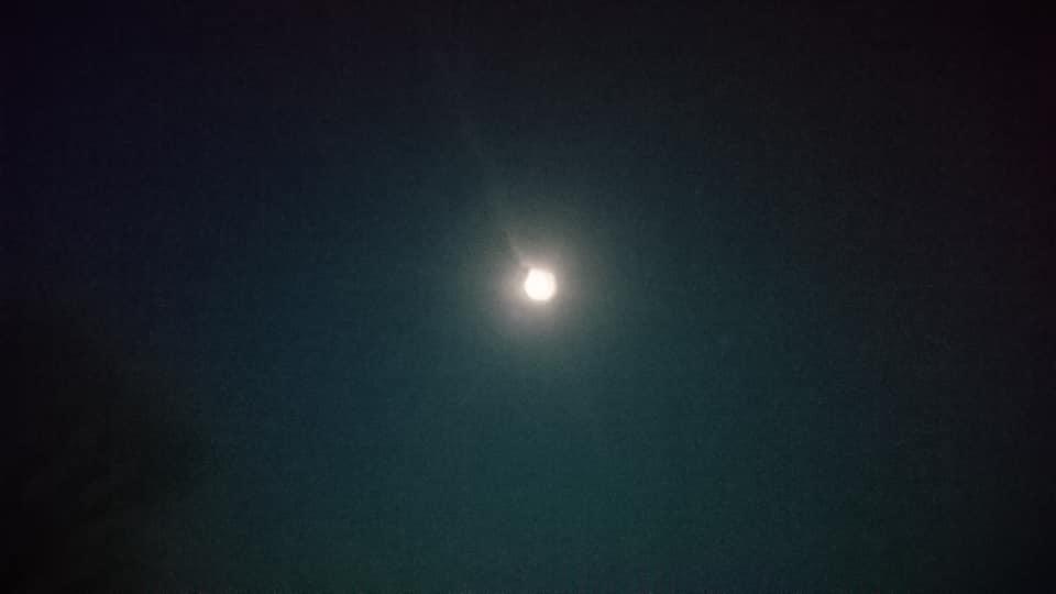 メナード美術館~星を見る会_f0373339_12513691.jpg