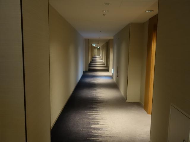 京王プラザホテル (3)_b0405262_17433395.jpg