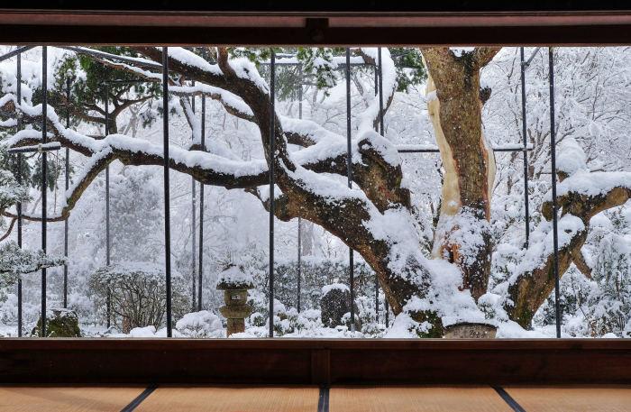 京都 大原雪景色 2019_f0021869_17052715.jpg