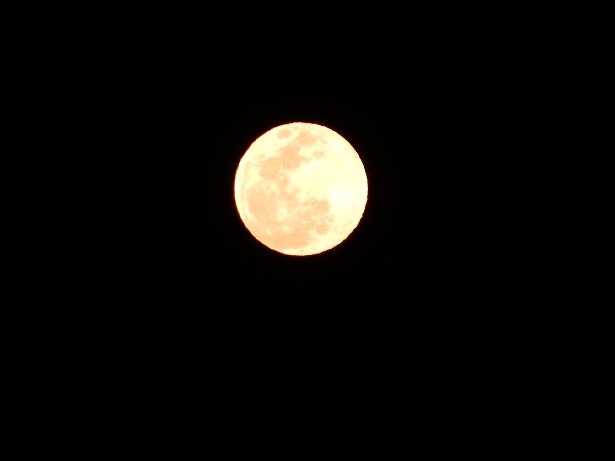 平成最後のスーパームーンが輝く_e0175370_21014094.jpg