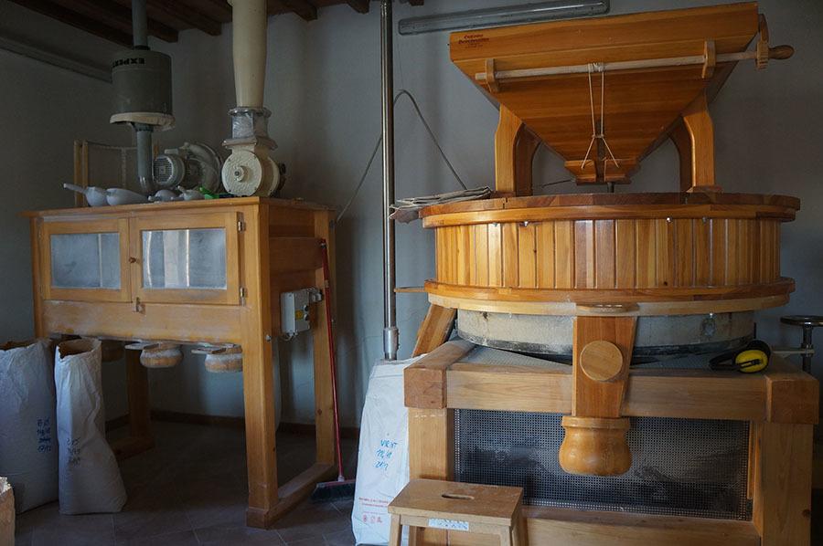 小麦を求めてボローニャへ_f0106597_19040542.jpg
