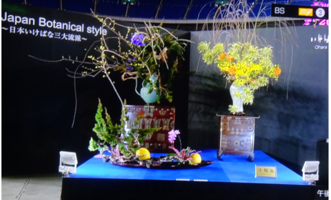 世界らん展2019~花と緑の祭典~BSプレミアム再放送…2019/2/19_f0231709_15462494.png
