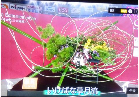 世界らん展2019~花と緑の祭典~BSプレミアム再放送…2019/2/19_f0231709_15463683.png