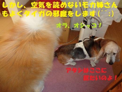 f0121712_00214690.jpg