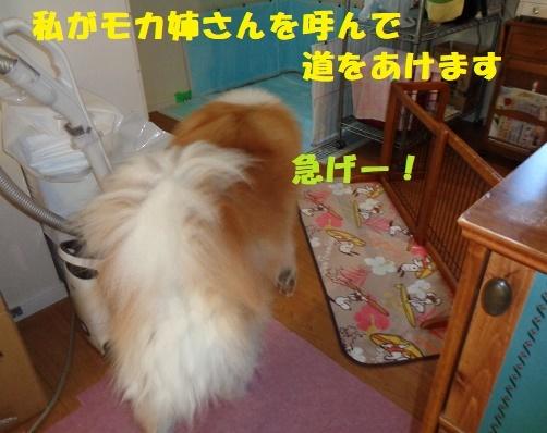 f0121712_00264253.jpg