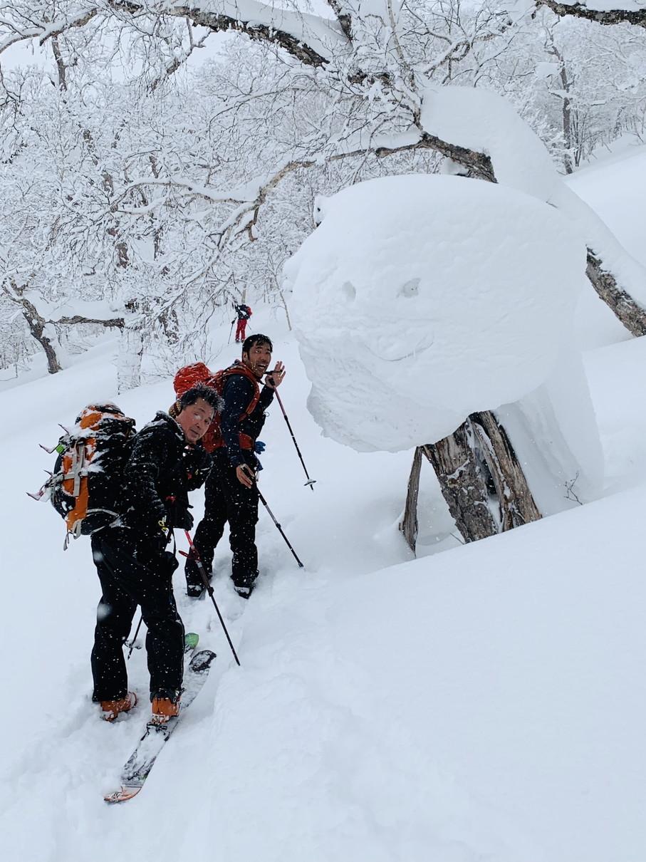 """2019年2月『雪山は呼ぶよ』 February 2019 \""""Hokkaido, Powder Snow Paradice\""""_c0219616_22533115.jpg"""