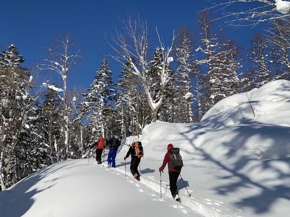 """2019年2月『雪山は呼ぶよ』 February 2019 \""""Hokkaido, Powder Snow Paradice\""""_c0219616_22561776.jpg"""
