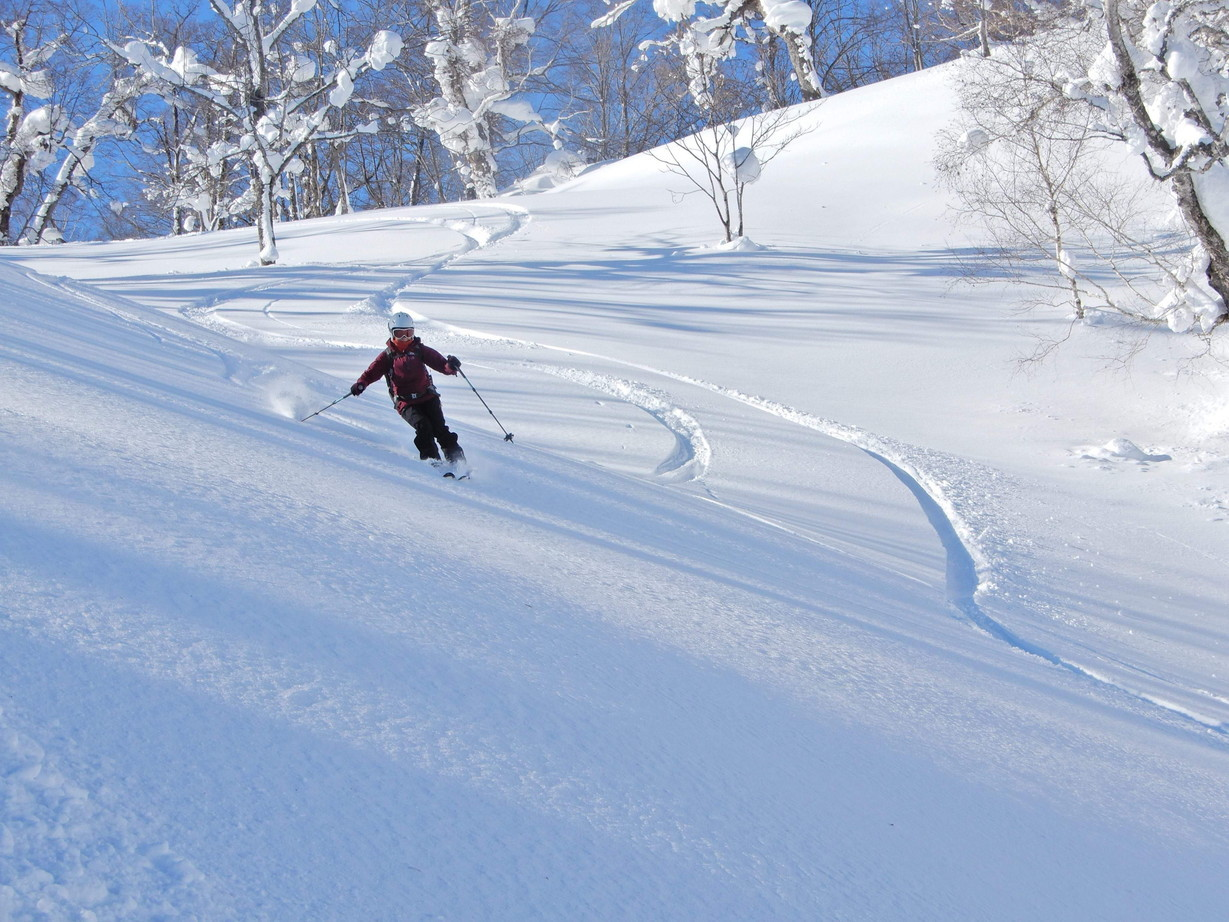 """2019年2月『雪山は呼ぶよ』 February 2019 \""""Hokkaido, Powder Snow Paradice\""""_c0219616_22561861.jpg"""