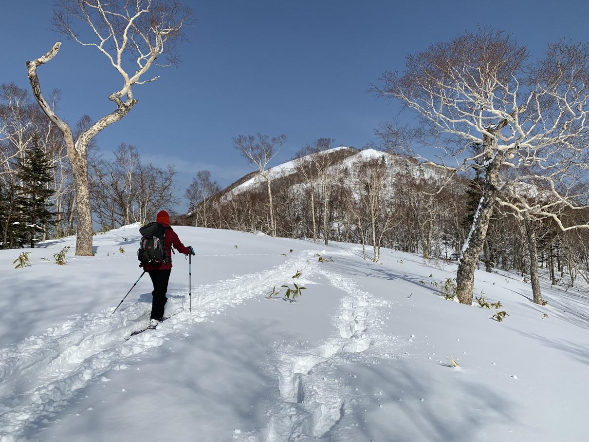 """2019年2月『雪山は呼ぶよ』 February 2019 \""""Hokkaido, Powder Snow Paradice\""""_c0219616_22584426.jpg"""